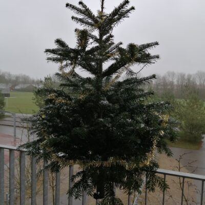 Juletræsfødder og salgspladsudstyr